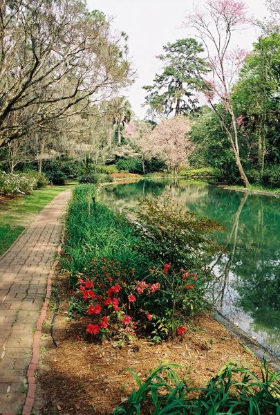 54 Best Memories Of Tallahassee Images On Pinterest