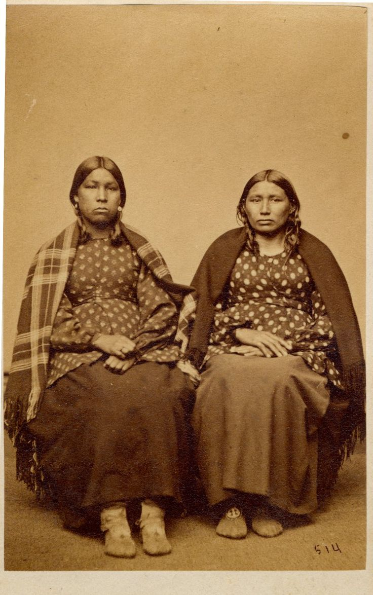 lakota culture during the 19th century Native american gender roles this workload increased during the first half of the nineteenth century as the fur trade raised the demands for dressed skins and.