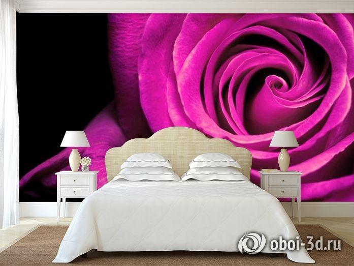 """3D Фотообои """"Фиолетовая роза"""""""