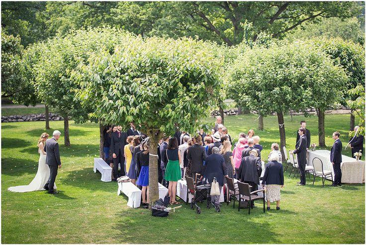 Hochzeit im Freien, Hochzeitsgäste, Natur, Grün, Brautkleid: Pronovias, Foto: V … – Trauung im Freien – Hochzeit