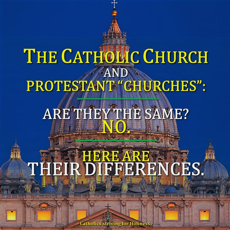 a comparison of the catholic church and the protestant church What's the difference between catholic and protestant catholicism and protestantism are two denominations of christianity, just like shia and sunni are sects of islam while the pope is the head of the catholic church, protestantism is a general term that refers to christianity that is not.