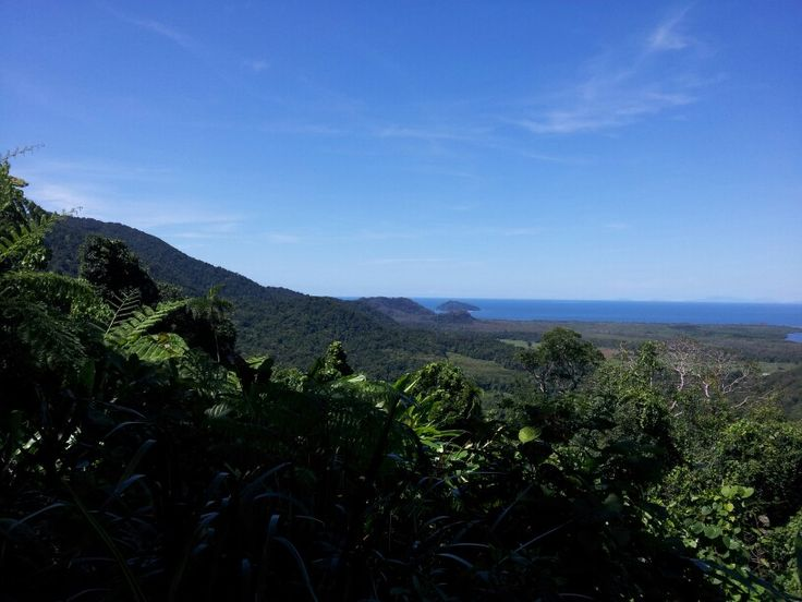 Cape Tribulation, where the forest meets the sea