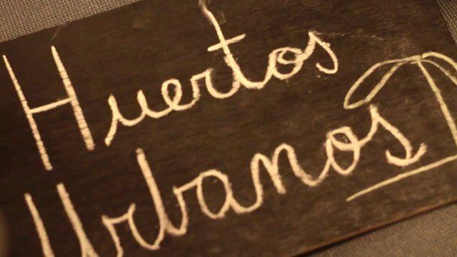 Revisas los talleres de huertos urbanos y participa el 2014!  #umayor #huertos #talleresumayor #temuco