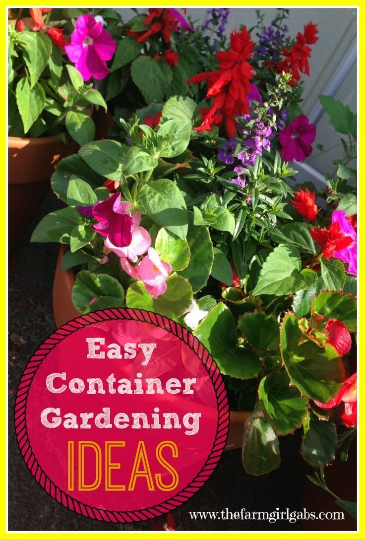Simple and easy container gardening ideas for flowers herbs and vegetables how does your - Herb container gardening ideas ...