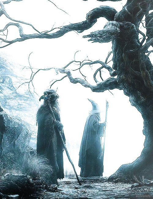 gandalf and radagast