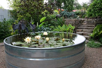 Seriously going to Tractor Supply this spring and buying a couple galvanized troughs to do this. Great idea!