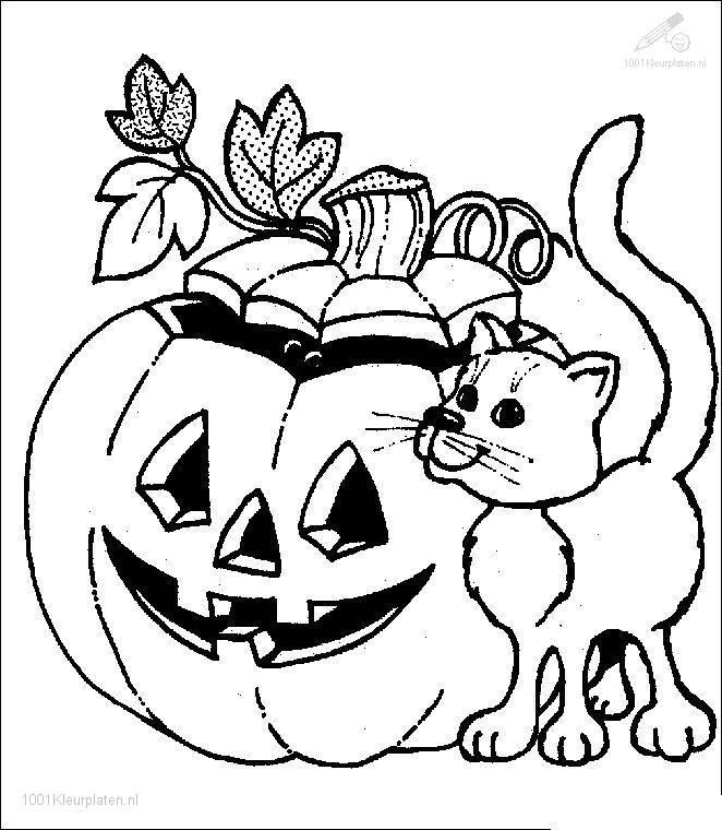 Cat And Halloween Pumpkin Coloring In Pagesdownload Printable Hallowen Pageshalloween Sheetshalloween
