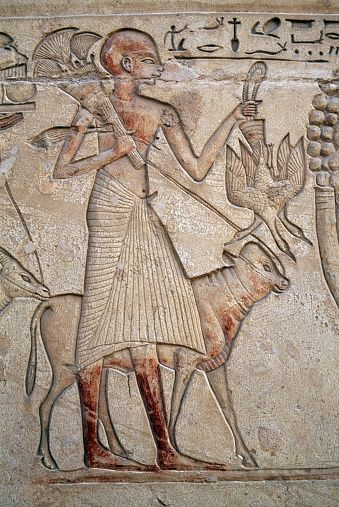Man with cattle and wild game, painted relief inside Tomb of Horemheb, Necropolis of Saqqara, Memphis (UNESCO World Heritage List, 1979), Egypt, Egyptian civilization, Dynasty XVIII, Detail