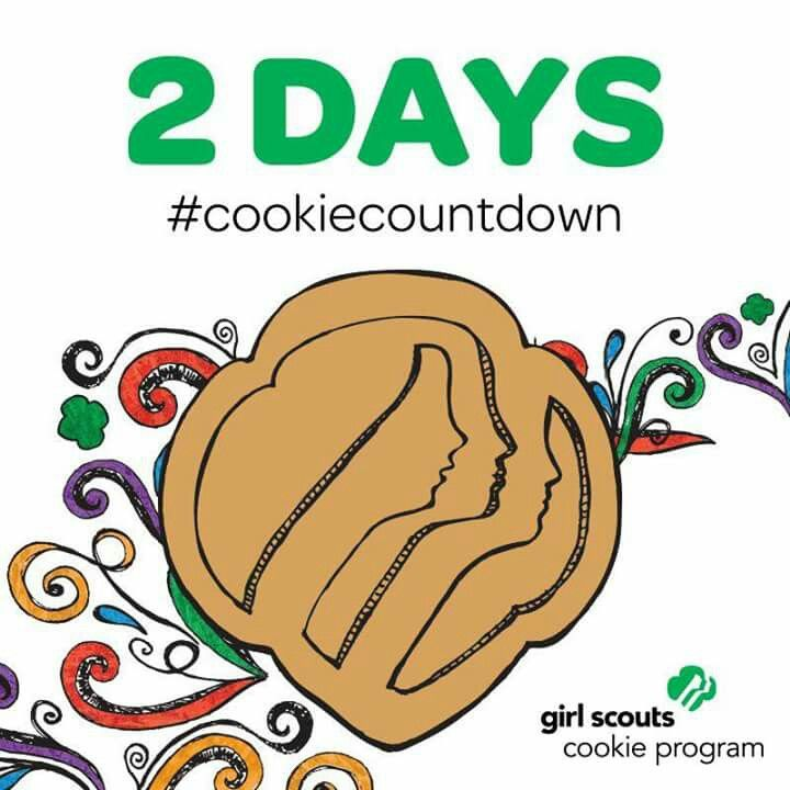 17 best images about girl scout cookies on pinterest