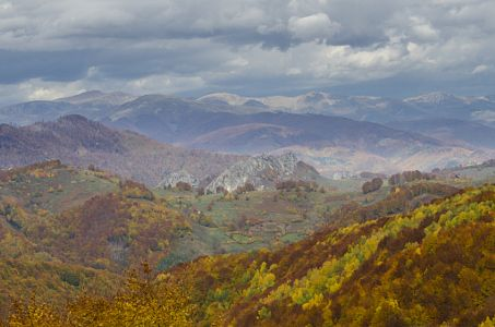 Autumn in Romania © Nono Pirvu Lucian by Nono Pirvu