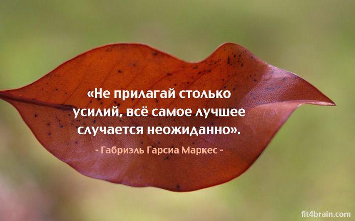 0_f17bb_c234318a_orig