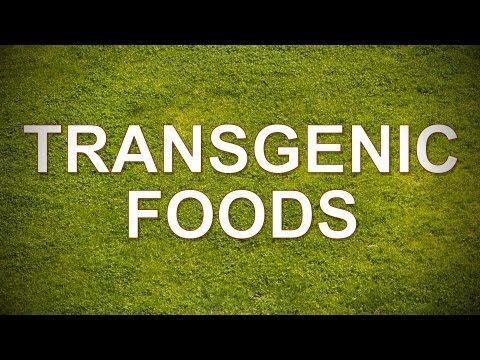 Transgenic Foods (GMO) - YouTube a source of transgenic foods