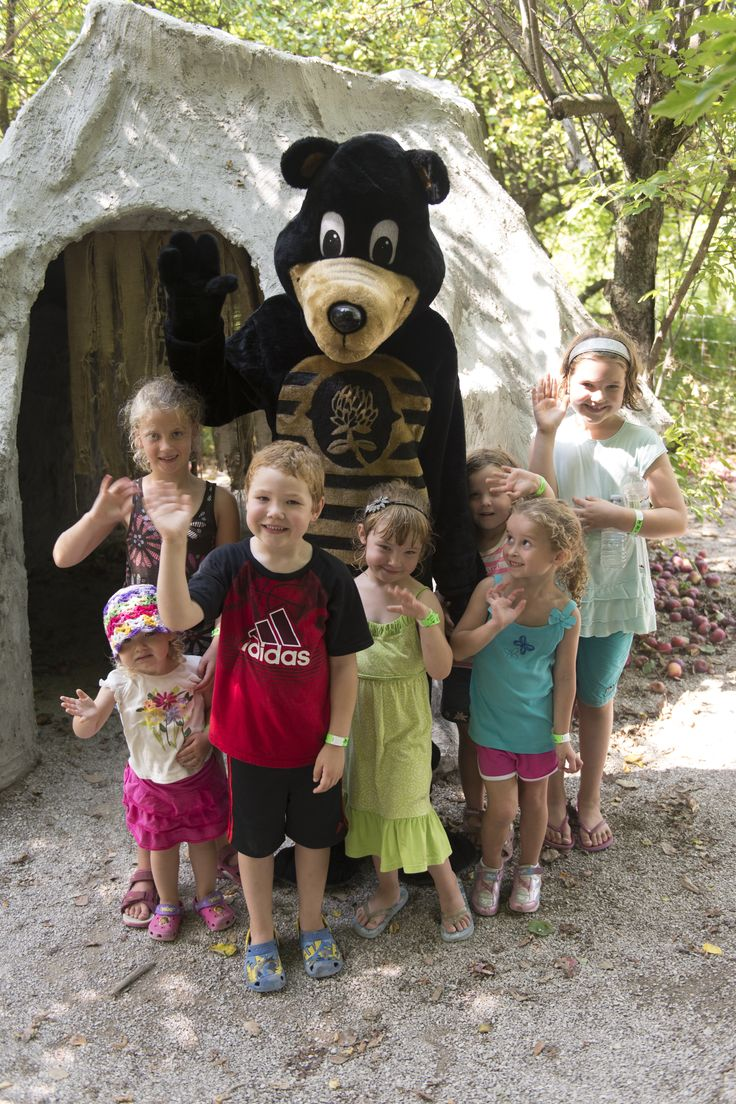 Sticky the Bear always visits us during our Honey Harvest Festival