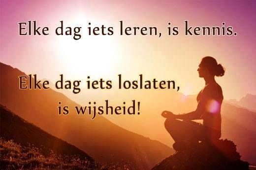 Elke dag iets leren is kennis. Elke dag iets loslaten is wijsheid.