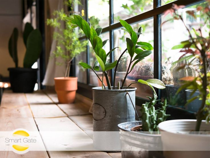 Would you prefer to travel knowing that your plants are watered and your house is looked after, while you're away? This can be easily solved with the iBlue Smart Gate.