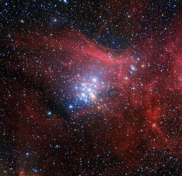 Звездное скопление NGC 3293 / Популярная астрономия