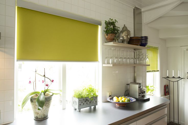 Lime Intu Roller blinds from Apollo Blinds