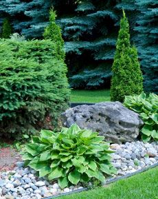 ProScape Lawn & Landscape Services | 866-776-2299 | Residential Tree, Shrub, and Planting Bed Maintenance | Serving Central Ohio Since 1998