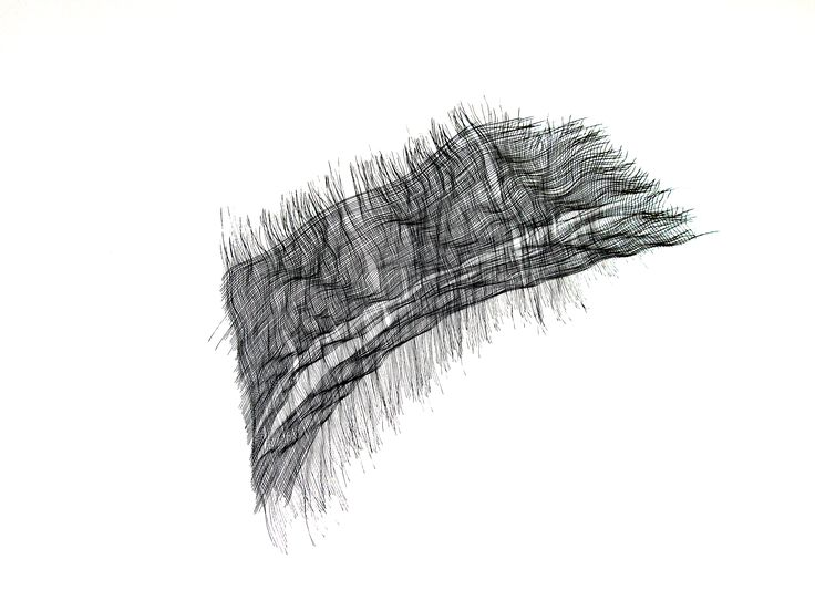 Line Drawing Feather : Best drawing images abstract art etchings and