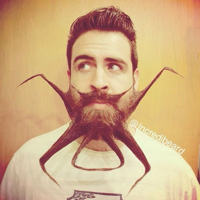 Best Weird Odd And Who Knows What Images On Pinterest - Incredibeard glorious beard
