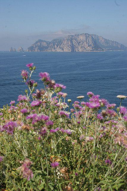 Punta Campanella, Massa Labrense, Campania Italy