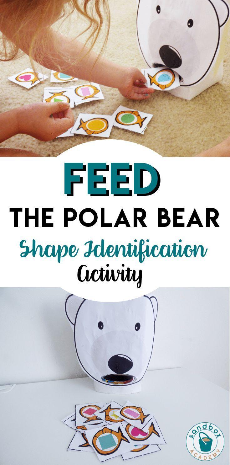 Feed The Polar Bear Shapes Identification Activity Sandbox Academy Polar Bears Activities Bear Activities Preschool Polar Animals Preschool [ 1482 x 735 Pixel ]