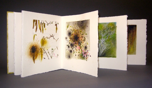 Andie Thrams, In Forests, Volume XVIII: Natural History.: Volume Xviii, Andy Thram, Natural History, En Nog, Artists Book, Nature History, Some