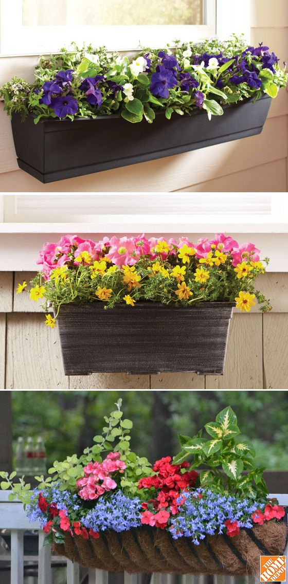 Window boxes are like wearable art for your home! Attached to windows or porch rails, they bring color and texture to eye level, brightening up your home's exterior. Keep the palette and plants simple for easy care and style, or show off your green thumb with bigger and wilder blooms. See more window box ideas at The Home Depot's Garden Club.