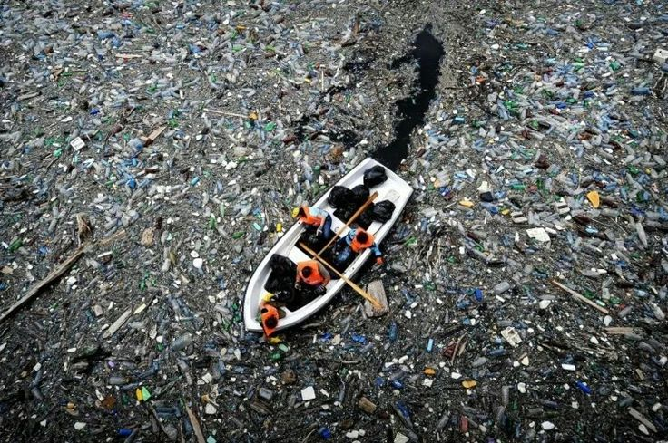 The great Pacific's Garbage Patch off the coast of California. It is twice the size of Texas.