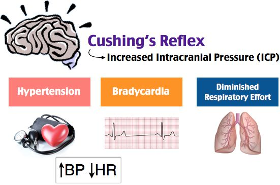 Cushing's triad is usually a pre-terminal event seen in patients with increased intracranial pressure and cerebral herniation through the foramen magnum. It is associated with decreased level of alertness, hypertension, bradycardia, and irregular respirations. Bradycardia is the first sign and is therefore the most sensitive indicator.