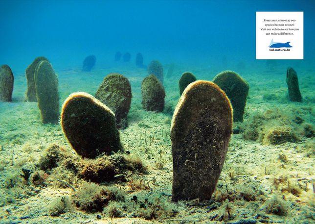 For Val-Nature.org by Bruketa&ZinicOM  #ocean #grave #endangered #species