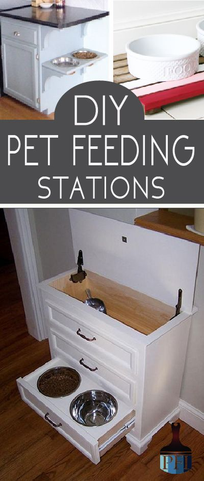 Make your pet's food a beautiful part of your home. Here are several DIY pet feeding stations that you, and your pet can be proud of.