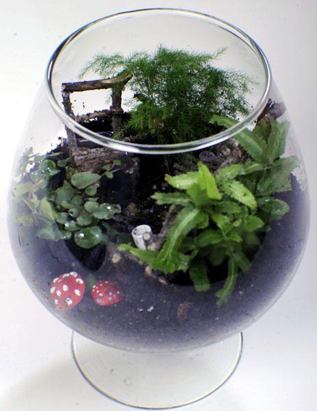 fairy garden terrarium Kairi Pinterest
