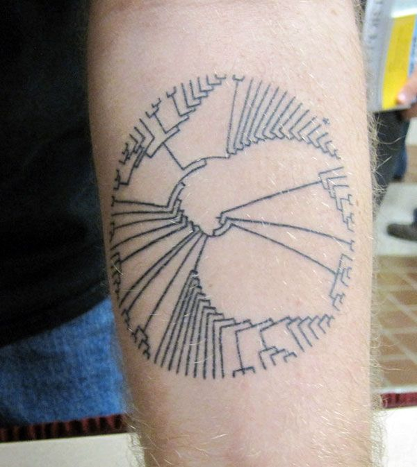 Tree of Life Arm Tattoo with asterisk at humans