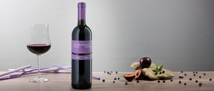 Negroamaro I.G.T. Salento: colore rubino intenso con tenui e sfuggenti riflessi color viola, ideale per la cucina mediterranea, con paste al sugo, zuppe, formaggi a media stagionatura. http://hitany.it/it/prodotti/vino/negroamaro-igt-salento-11