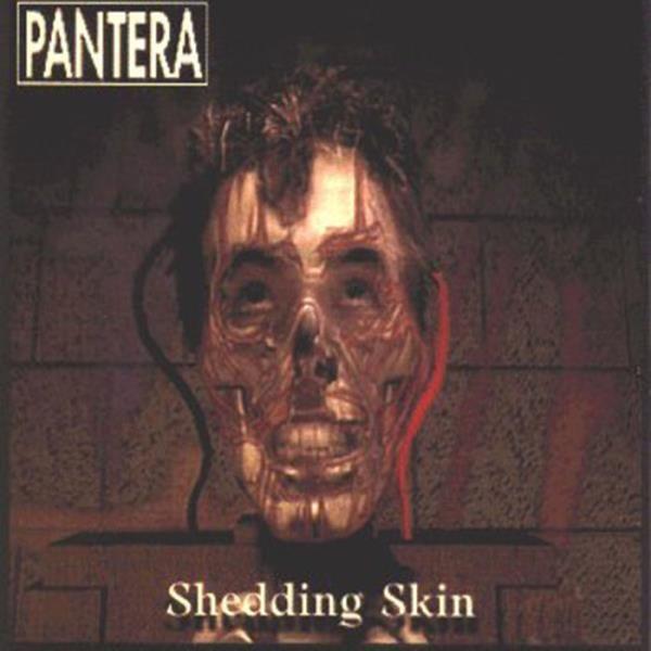 """#RECENSIONE: #Pantera ((Shedding Skin - single - ))  Ulteriore tassello che ci avvicina sempre più all'analisi totale del colossale """"Far Beyond Driven"""", """"Shedding Skin"""" giunge a portare una ventata d'aria nuova, dopo la pubblicazione del singolo """"Planet Caravan"""", tributo dei Pantera ai Black Sabbath. In questo inedito, i texani mostrano una vena compositiva senza dubbio più matura, eccedendo (in senso positivo) nelle dosi di personalità aggiunta all'impasto musicale.  (Fabrizio Iorio)"""