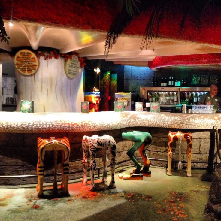 Animal Bar Stools Lined Up Ready For Customers To Enjoy A