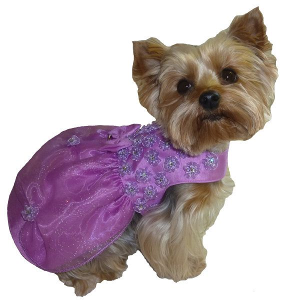 Pattern 1521 for Little Dogs / Princess Dress in by SofiandFriends, $8.25