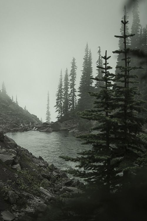 Small lake in the wilderness.