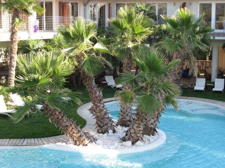 Sondretarifen Reduzierte Preise Special Rates für einen erholsamen Urlaub http://www.colorhotel.it/sonder-angebote-gardasee