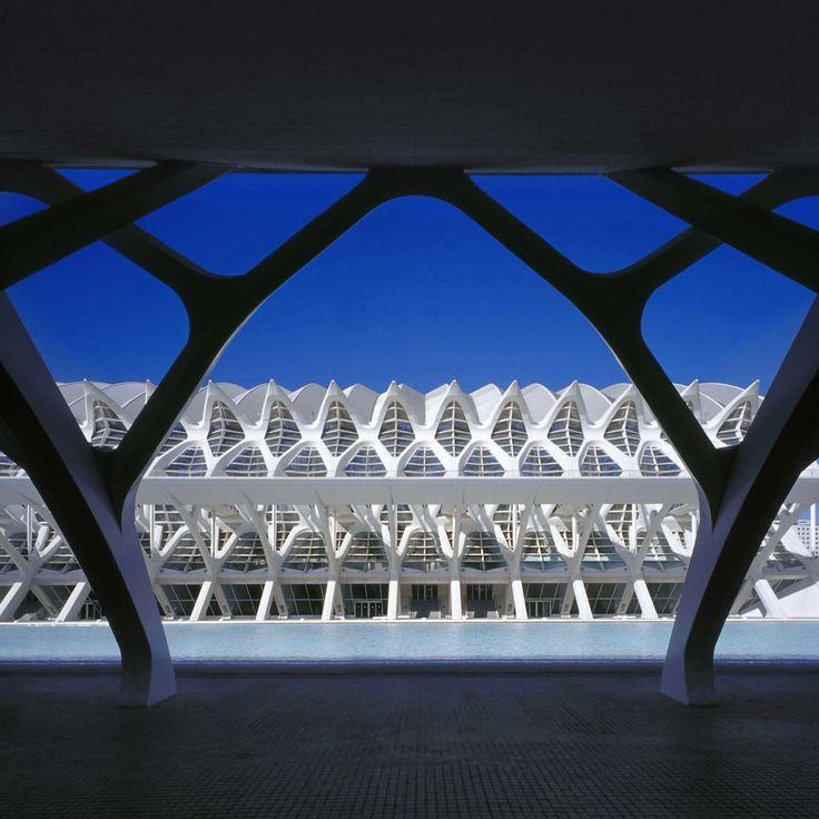 santiago calatrava / ciudad de las artes y las ciencias, valencia