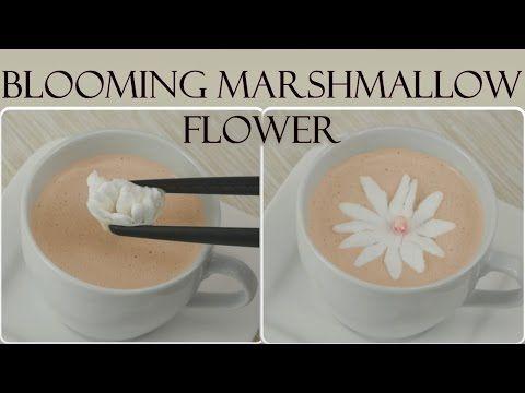 DIY Blooming Marshmallow Flower | Aufblühende Marshmallow-Blumen selber machen - YouTube