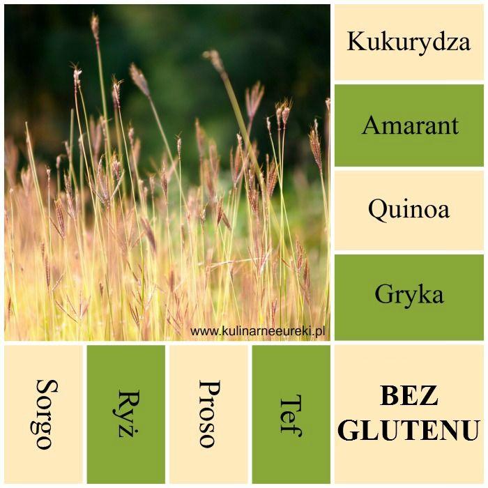 Dieta bezglutenowa, co można jeść. Zboża nie zawierające glutenu.