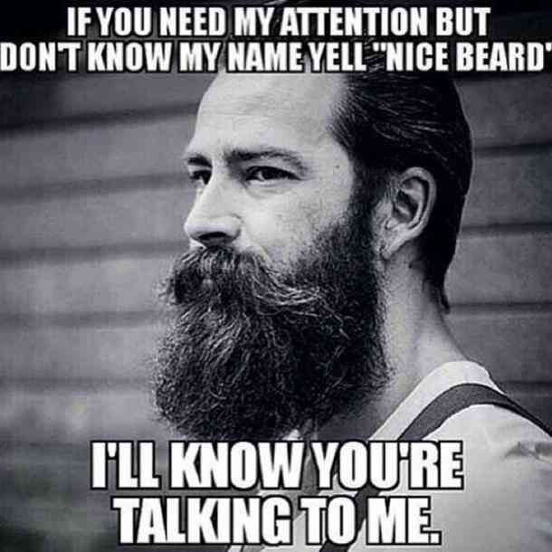 40 Funny Beard Memes Hottest Celebrity Beards To Celebrate National Beard Day Beard Humor Beard Memes Funny Beard Memes