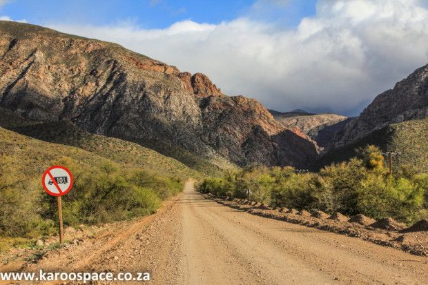 """""""More than just a group of curated shows, the festival committee is dedicated encouraging experiment: in addition to exhibitions, we have invited artists to work in Prince Albert's public spaces – to share both their thinking and art-making with us,"""" he said.The road from Prince Albert into the Swartberg Pass."""