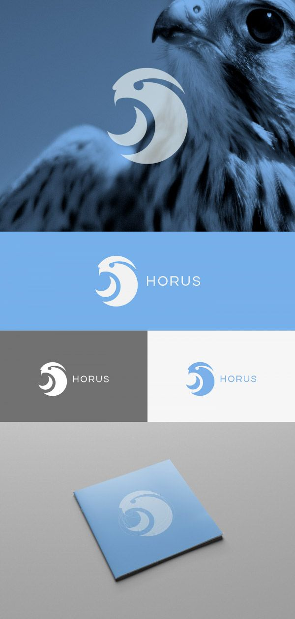 """""""Horus is a wearable device developed to assist blind and visually impaired people every day. The Horus name refers to the hawk-eyed representation of the Egyptian god, and this is the reason why we decided to give this name to our project. Hence, its logo is the silhouette of a hawk."""""""