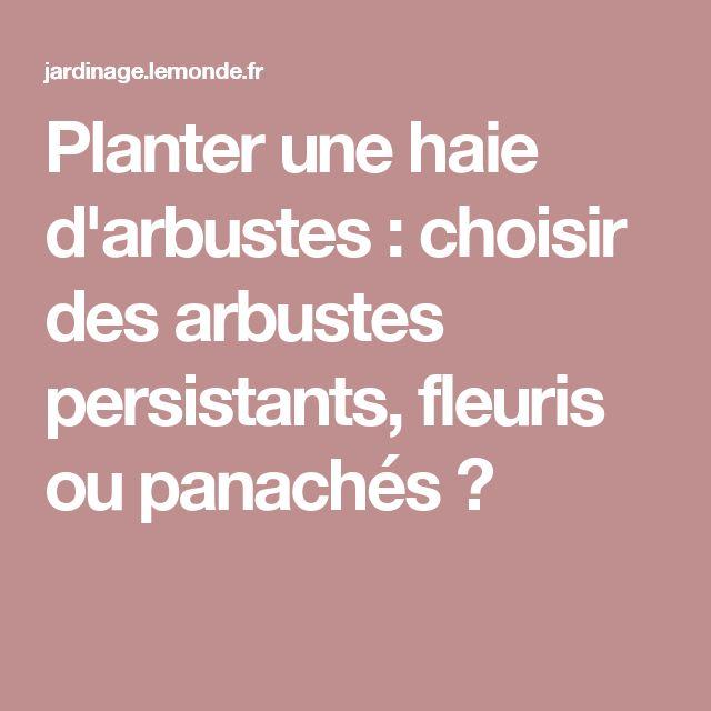 Planter une haie d'arbustes : choisir des arbustes persistants, fleuris ou panachés ?
