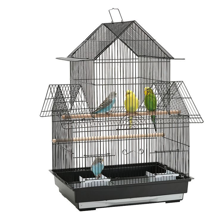 cheap budgie cages