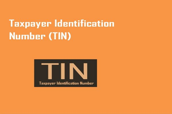 Tax Identification Number Tin Number In 2020 Tin Number Personal Loans Paying Taxes