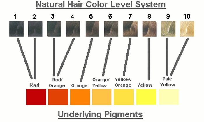 Hair color chart, for toners and neutralizing hair. Helpful for everyone who likes to dye their own hair and is worried about brassy hair.